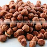 11-13mm 13-15mm Natural Hazelnut Kernel from Turkey