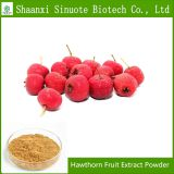 Factory Supply Organic Hawthorn Fruit Extract Powder  Flavone 80%