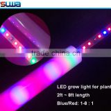 High effciency 160Lm/W 12 led bulb mixed red white spectrum led grow light