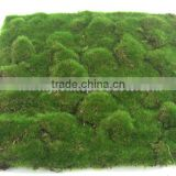 100cm Artificial Moss Carpet, Decorative Wall Carpet, Artificial Silk Carpets, High Quality