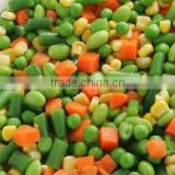 Frozen Mix Vegetables ( Beans - Peas - Carrots - Broccoli- Okra - Molokai - Spanish - French fries ...)