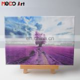 photo canvas printing, wood framed canvas, streched canvas