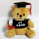 Graduate Bear Stuffed Plush Toys