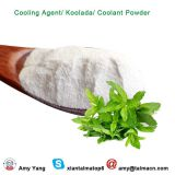 High Concentrated Mint Flavor Koolada WS-23 Powder Cooling Agent