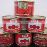 210g Canned Tomato Paste with gino quality and competitive price