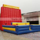 Giant inflatable play structure thrilling outdoor inflatable sports arena bounce games for hot sale