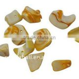 Sea Shell Beads, Dyed, Yellow, about 9~21x11~13x5~11mm, hole: 2mm, about 700pcs/500g(BSHE-S003-5)