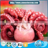 Hot selling Japanese food material healthy frozen boiled octopus for sale