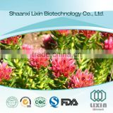 Hot selling GMP OEM factory supply high quality plant extract Necessary body energy Rhodiola Rose Extract powder