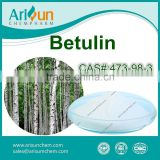 Factory Supply Hot Sale Birch Bark Extract Betulin Powder