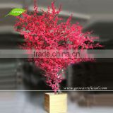 Inquiry about GNW BLS033 Red blossom Bonsai tree indoor flowering trees