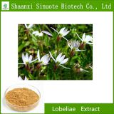 High Quality Natural Lobeliae Extract with best price