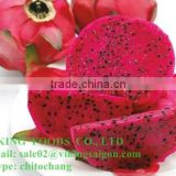 FRESH DRAGON FRUIT HIGH QUALITY FROM VIETNAM