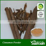 Whole Sale Ceylon Cinnamon Bark Powder