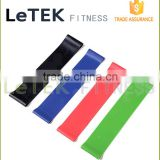 Resistance Bands - Set of Fitness Bands with Large Exercise Band - The Best Elastic Stretch Bands- Resistance Loop Bands- Fitnes