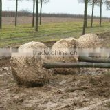 Tree Wire Basket, Tree Root ball netting