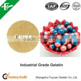 High strength hide Glue Industrial Gelatin