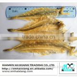 Wholesale dried bombay duck fish