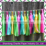 Hanging Tissue Paper Tassel Garland for wedding decoration