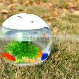 domestic desktop aquarium fish tank for coffee table