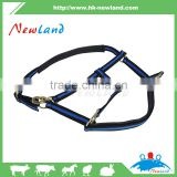 Padded Horse Riding Halter Horsemanship blue halted suede cowhide horse pp fabric metal accessories