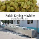 Raisin Drying Machine