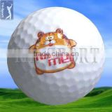 funny logo printed golf ball for sale