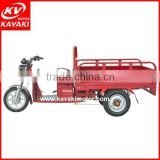 Guangzhou China adult electric motorcycle/3 wheel cargo electric tricycle/electric auto rickshaw on sale