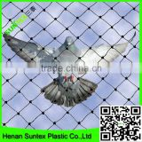 UV inhibited virgin HDPE black bop up bird net,fireproof anti bird netting,high strength bird screen mesh