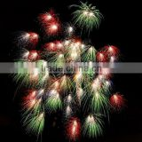China celebration special effect display fireworks shell for big firework show manufacturer