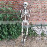 Halloween Skeleton 100% Plastic 165cm Life Size Jointed-N-Stay Hanging Human Skeleton for Halloween Decoration Halloween Props