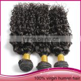 Tangle Free High Quality Unprocessed Brazilian Human Hair Afro Women Water Wave Hair Extension
