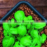 Expanded Clay Aggregate Pebbles Pellets Rocks Growing Media Hydroponic Substrate