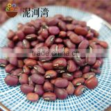 machine pick red cowpea 2016 crop
