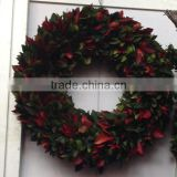 Decorative preserved holly leaves wreath