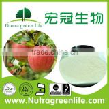 Top quality Apple Peel Powder Extract(Latin name:Malus Pumila Mill ) Phloridzin 4%, 40%, 80%, 90%, 98%