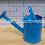 HOT-SALE garden blue metal watering can