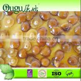 high quality and cheap price canned nameko mushroom canned champignon mushroom canned shiitake mushroom dried mushroom