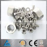 Factory production good price standard and non-standard stainless steel 309S bolts and nuts