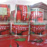 canned tomato factory ,channed chopped tomatoes,tomatoes in cans