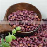 small red kidney bean 2016 crop good price high quality