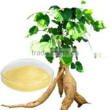 100%High purity panax ginseng extract powder with top quality and good service specially for your health