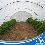 PP Spun-Bonded Non-Woven Agricultural Greenhouse