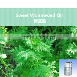 natural artemisia annuae oil,plant essential oil artemisia annuae oil