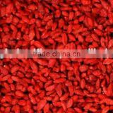 DRIED GOJI BERRY 280, TIBET GOJI BERRIES, HIMALAYA GOJI BERRIES, NINGXIA ZHONGNING GOJI MANUFACTURE, HOT SELL 2015!