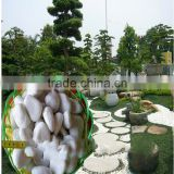 China band wholesale price natural stone pebble paving with free sample