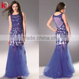 Hot Sale High Quality Blue Tulle Sleeveless Long Dress With Appliqued Sexy Transparent Backless Fashion Girls Party Wear Dress