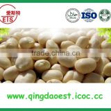Offer hot sale high demand products raw peanuts prices blanched peanut kernel