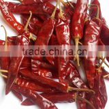 INquiry about Indo- 5 Chilli/US- 5/Endo 5 Chilli Exporters