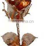 Copper Plated Natural Rose